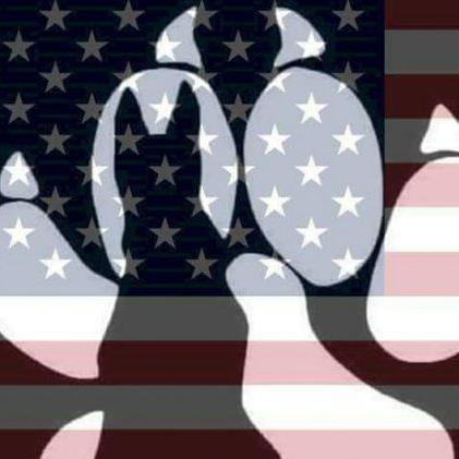 Military Dog Handlers